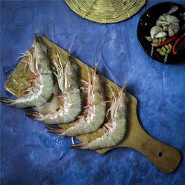 Freshwater Prawns (Jhinga) - Whole